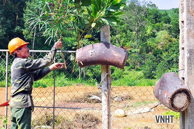 Hương Sơn: Trải nghiệm cùng nhóm thợ ngược ngàn săn ong rừng về nuôi