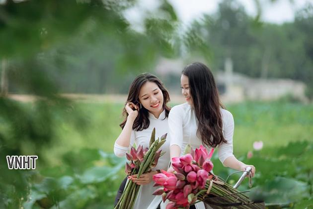 Tháng năm rực rỡ mùa hoa sen