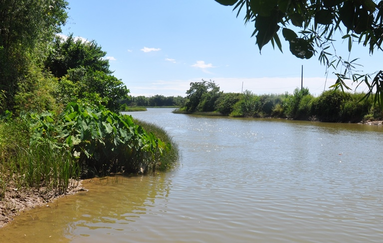 Tản văn Dòng sông quê hương của tác giả Linh Châu