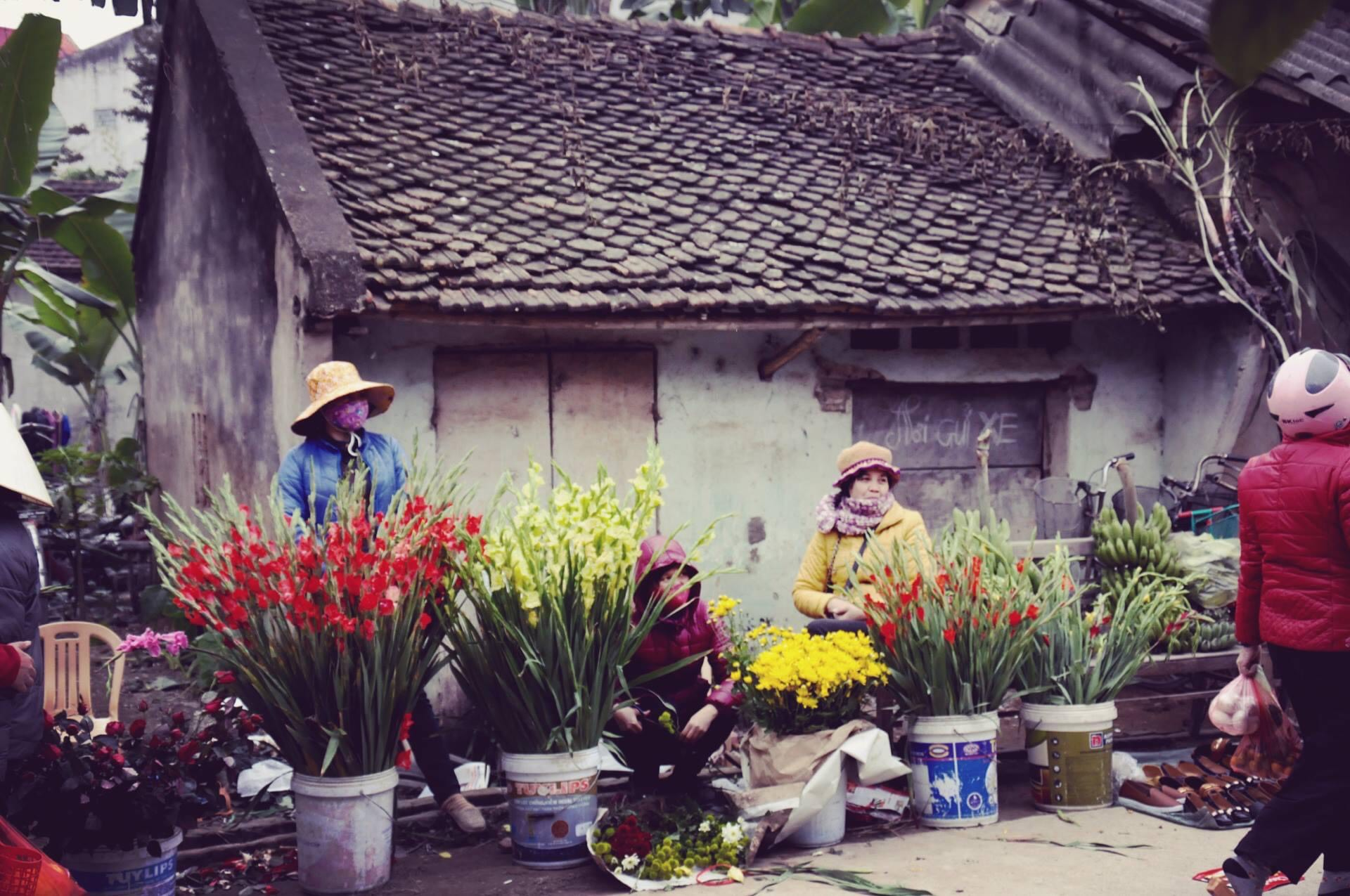 Chùm tản văn của các tác giả Hữu Ngọc, Ngô Đức Hành, Nguyễn Thị Hòe